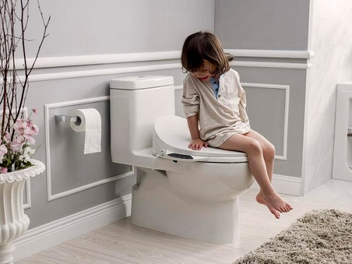 Nên mua bồn cầu, thiết bị vệ sinh Toto hay Inax? Review từ Chuyên Gia