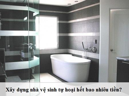 Xây nhà vệ sinh tự hoại hết bao nhiêu tiền